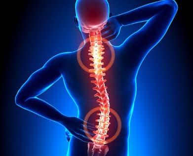 Гирудотерапия при остеохондрозе